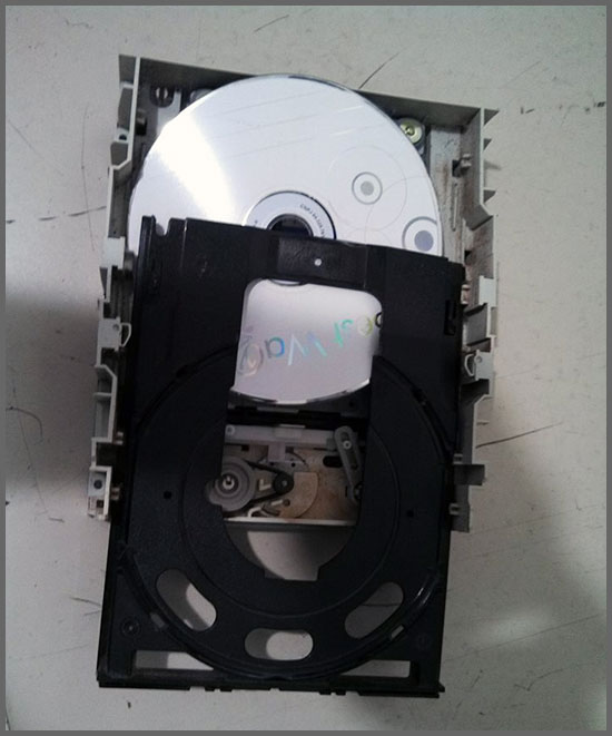 Flagras de Atendimento - DVD